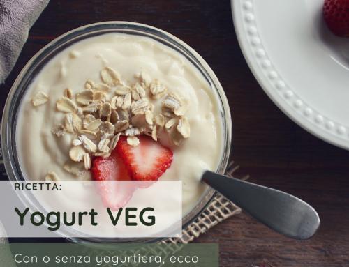 Yogurt veg fatto in casa